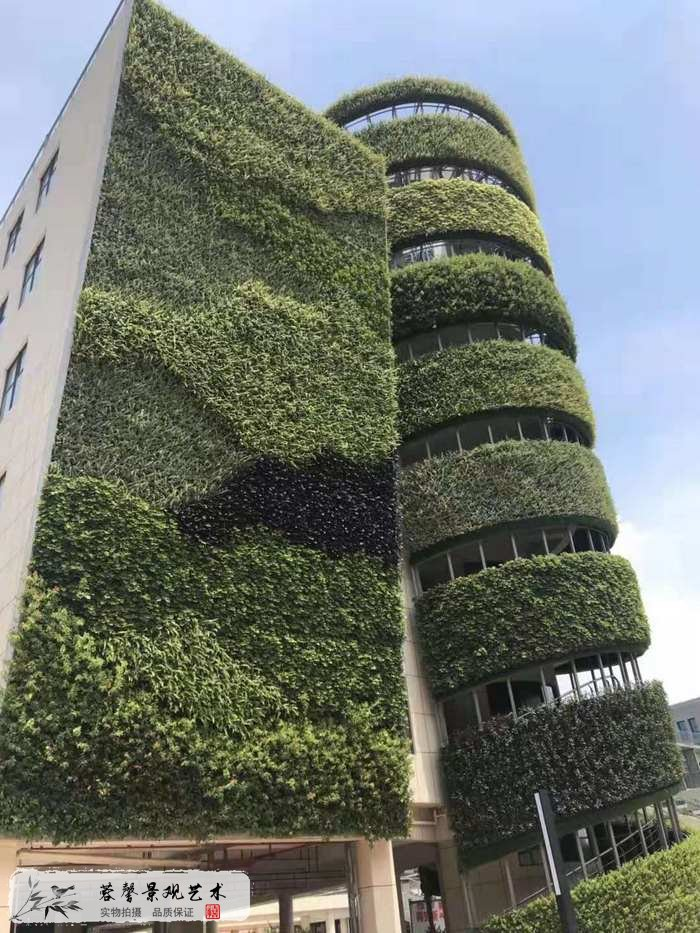 室外垂直花园
