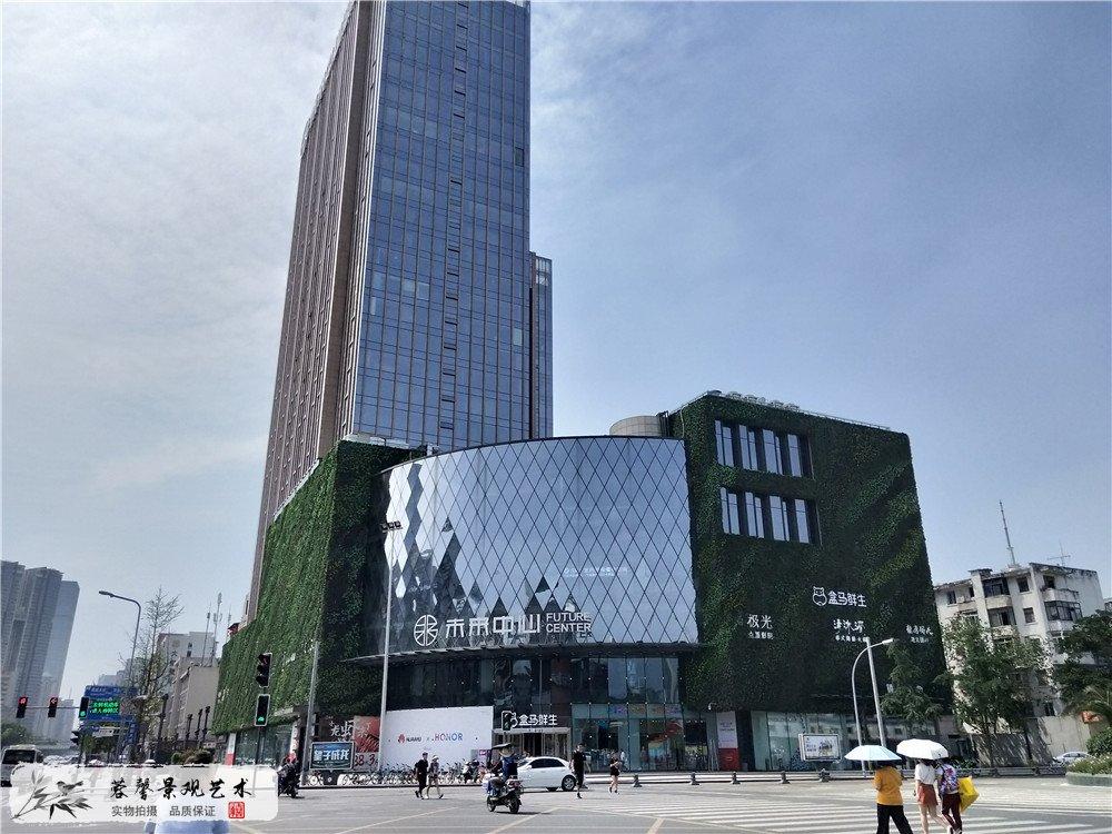 成都大型商场室外防抗紫外线植物墙 (1)